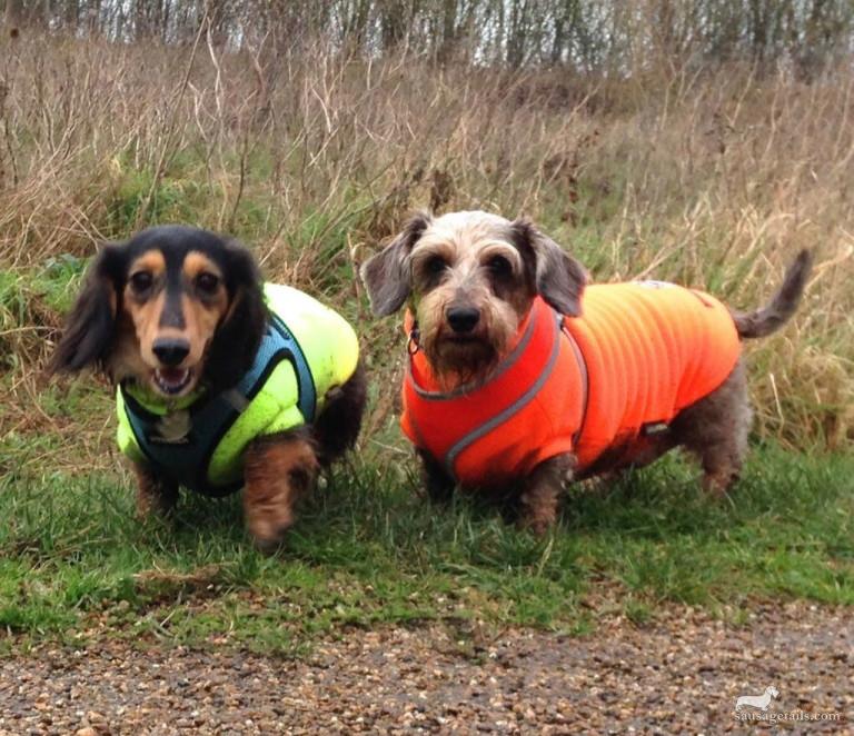 Maisie & Charlie