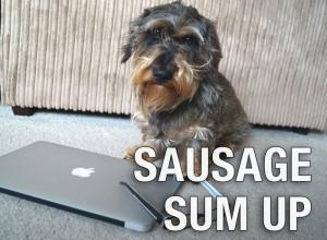 sausage-sum-up2016