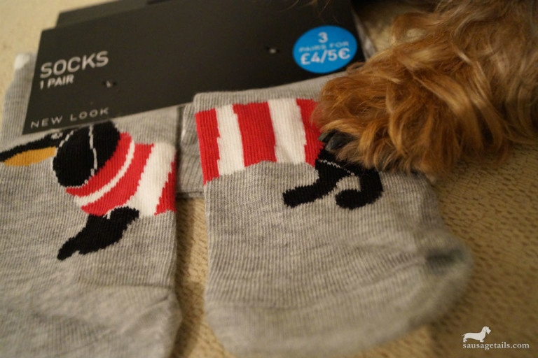 New Look Sausage Dog Socks