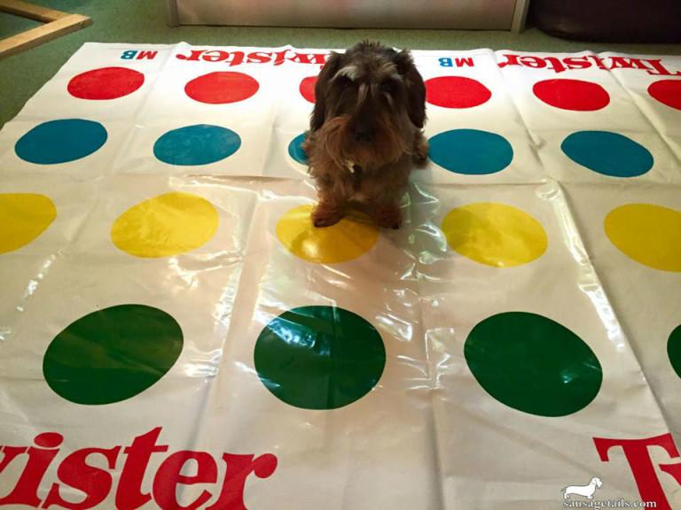 Dachshund Board Game