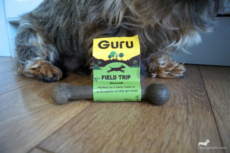 Guru Field Trip