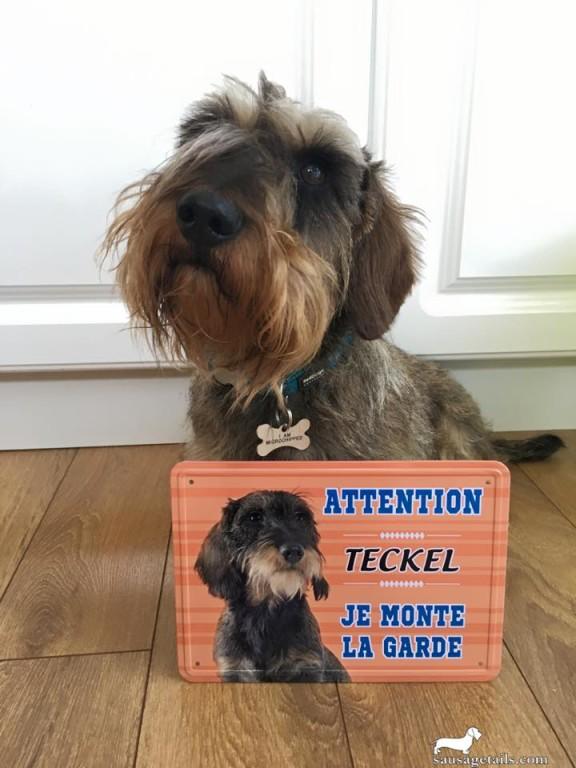 Teckel Sign