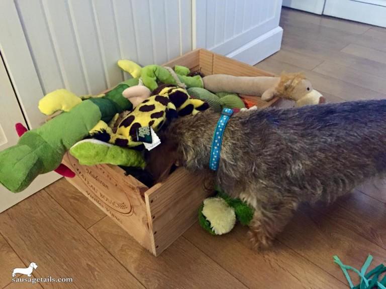 Dachshund Toy Box