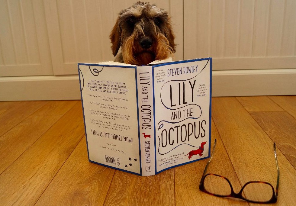 Lily And The Octopus Book