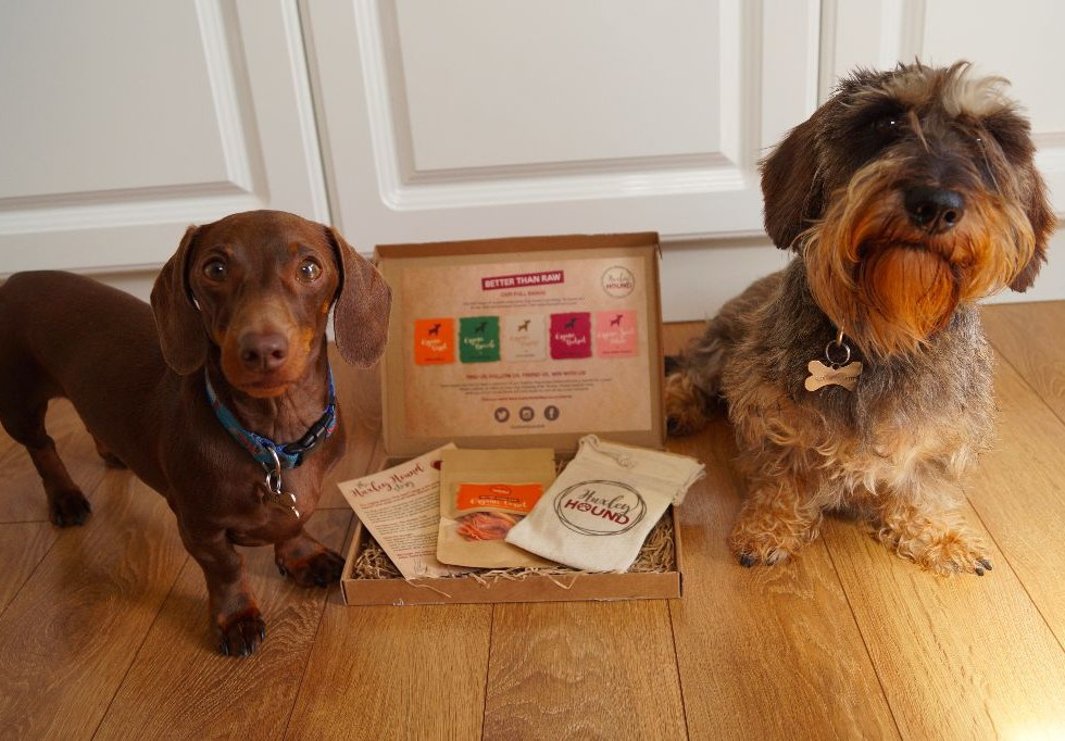 Huxley Hound Treats