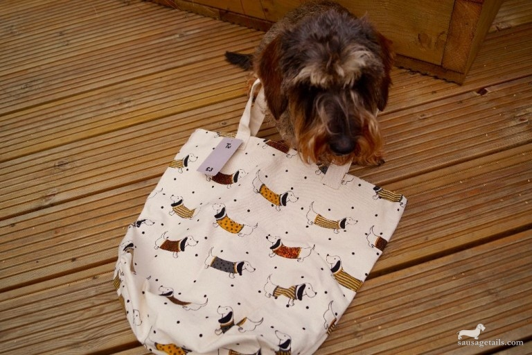 Sainsburys Dog Bag