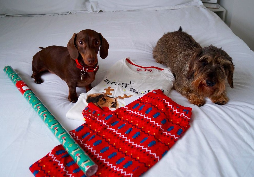 Marks & Spencer Dachshund Pyjamas