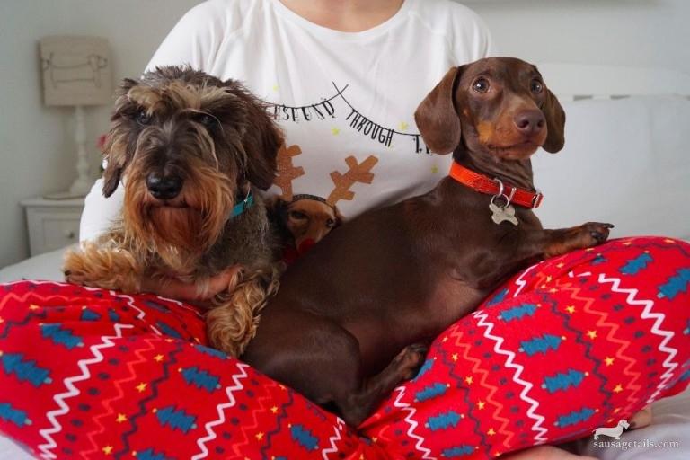Marks & Spencer Christmas Sausage Dog Pyjamas