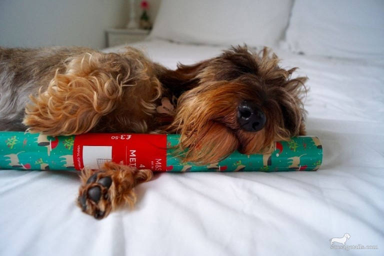 Marks & Spencer Sausage Dog Wrapping Paper