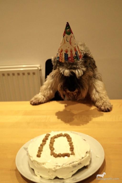 Schnauzer Birthday Cake