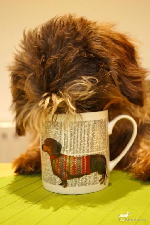 Sainsburys Sausage Dog Mug
