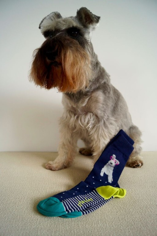 Joules Schnauzer Socks
