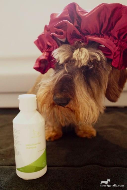 Serenity Pet Shampoo