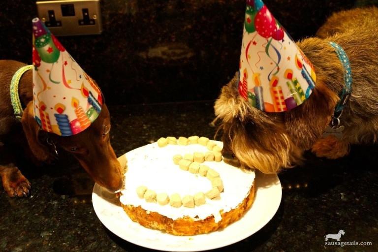 Sausage Dog Cake