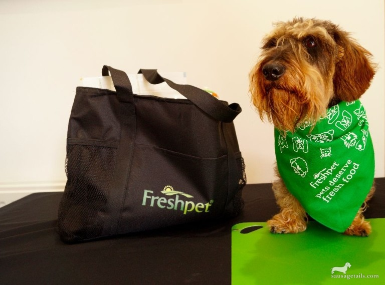 Freshpet Food Review