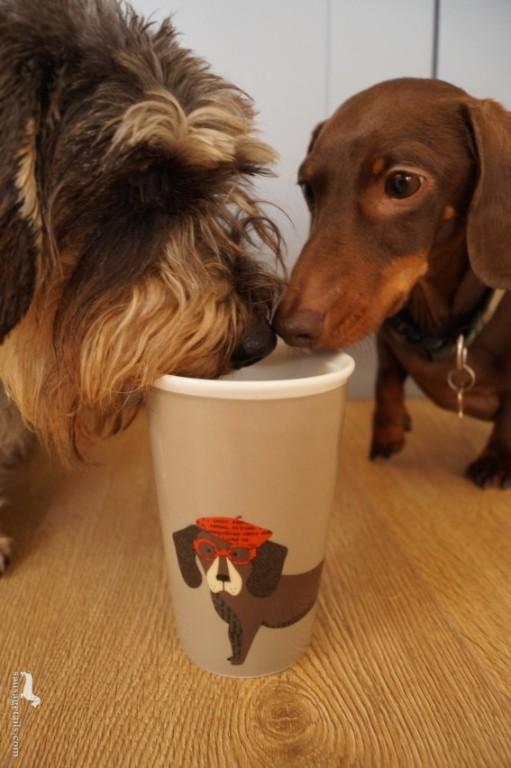 Sausage Dog Travel Cup