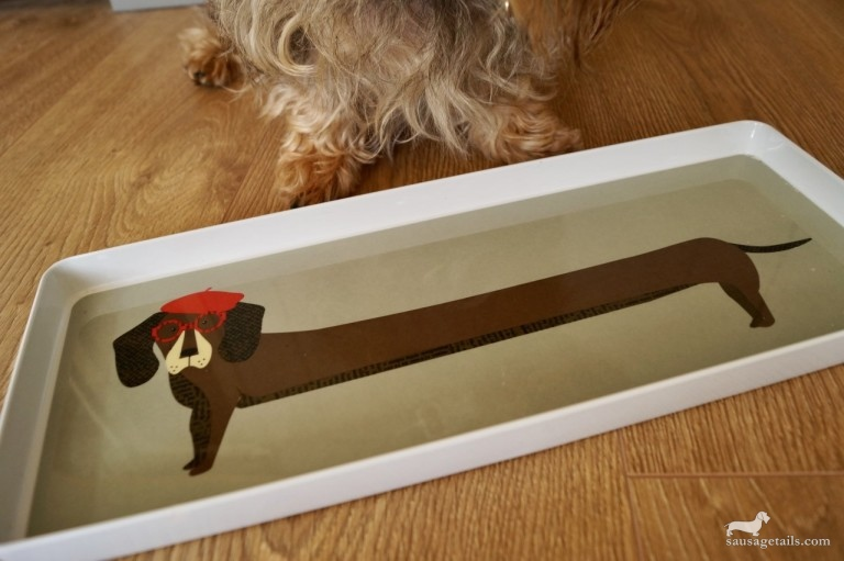 Sausage Dog Tray