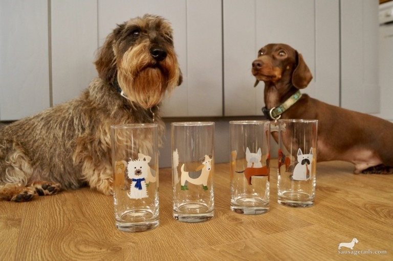 Next Sausage Dog Glasses