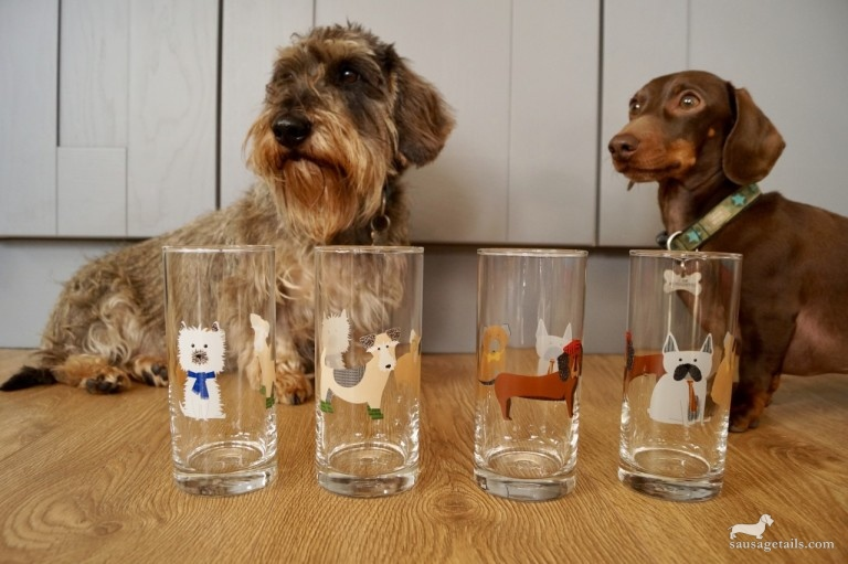 Next Dachshund Glasses