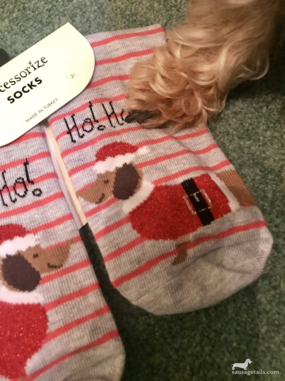 Dachshund Christmas Socks