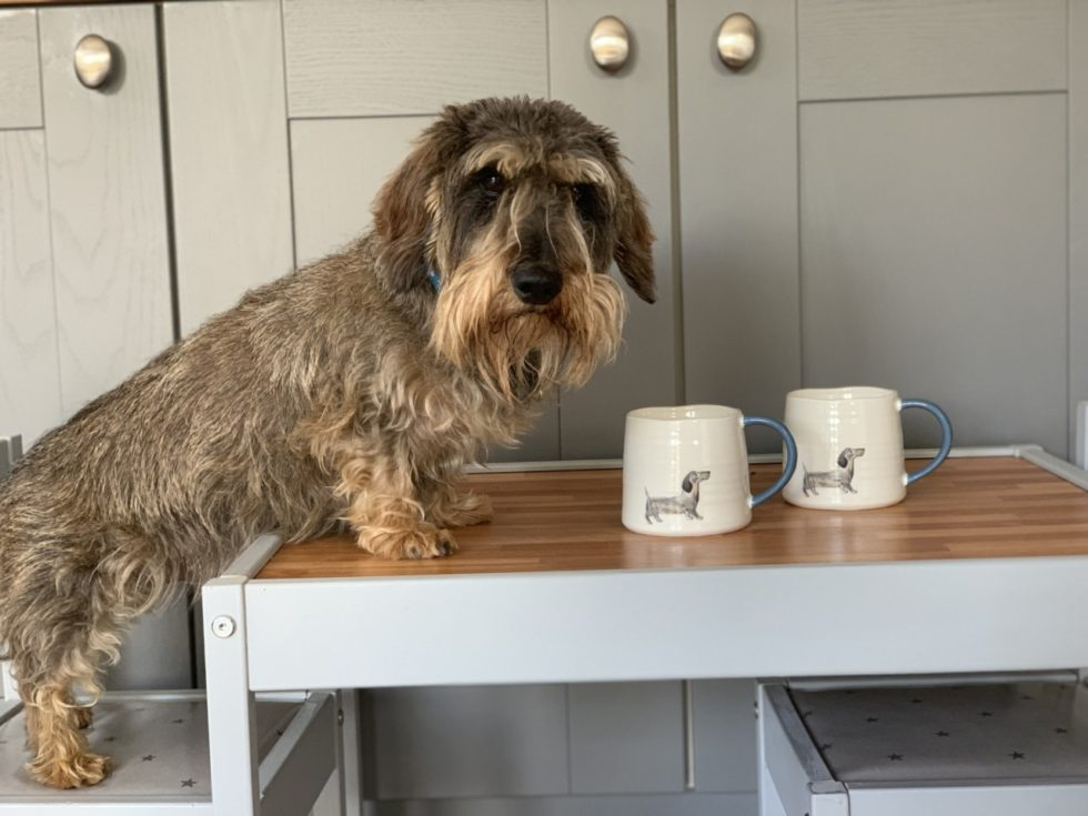 M&S Sausage Dog Mug